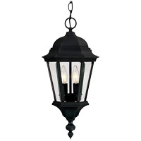 Wakefield 2 Light 9 inch Black Outdoor Hanging Lantern in Textured Black
