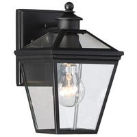 Ellijay 1 Light 10 inch Black Outdoor Wall Lantern
