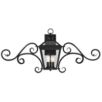Ellijay 3 Light 17 inch Black Outdoor Wall Lantern, with Mustache