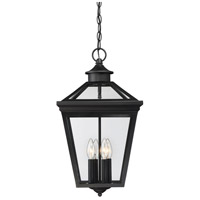 Ellijay 4 Light 12 inch Black Lantern Ceiling Light