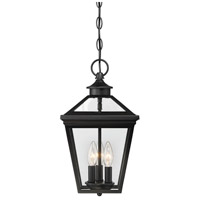 Ellijay 3 Light 9 inch Black Outdoor Hanging Lantern