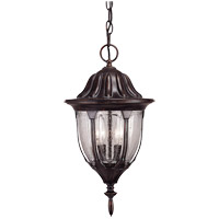 Tudor 2 Light 9 inch Bark and Gold Outdoor Hanging Lantern