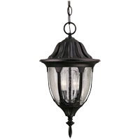Tudor 2 Light 9 inch Textured Black Hanging Lantern Ceiling Light