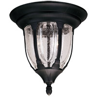 Tudor 2 Light 11 inch Textured Black Outdoor Flush Mount