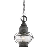 Savoy House 5-225-88 Enfield 1 Light 10 inch Oxidized Black Outdoor Pendant alternative photo thumbnail