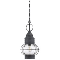 Enfield 1 Light 11 inch Oxidized Black Outdoor Hanging Lantern