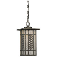 Waterton LED 8 inch Graphite Outdoor Hanging Lantern