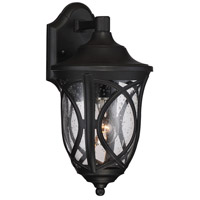Highgate 1 Light 7 inch Black Outdoor Lantern in Clear Seeded