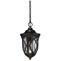 Highgate 1 Light 9 inch Black Outdoor Hanging Lantern in Clear Seeded