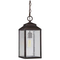 Brennan 1 Light 7 inch English Bronze/Gold Outdoor Hanging Lantern in Clear Seeded