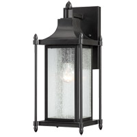 Savoy House 5-3451-BK Dunnmore 1 Light 16 inch Black Outdoor Wall Lantern in Clear Seeded photo thumbnail