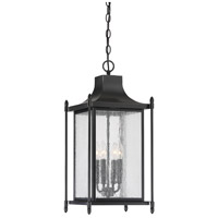 Dunnmore 4 Light 11 inch Black Outdoor Hanging Lantern