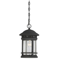 Upton 1 Light 9 inch Black Outdoor Hanging Lantern