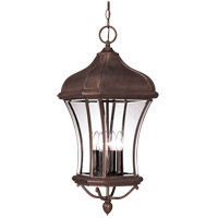 Realto 4 Light 12 inch Walnut Patina Outdoor Hanging Lantern