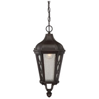 Hamilton 1 Light 9 inch English Bronze Hanging Lantern Ceiling Light in Seeded