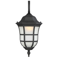 Ashburn 1 Light 18 inch Black Outdoor Wall Lantern in Frosted Seeded