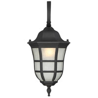 Ashburn 1 Light 10 inch Black Lantern Ceiling Light in Frosted Seeded