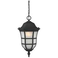 Ashburn 1 Light 10 inch Black Hanging Lantern Ceiling Light in Frosted Seeded