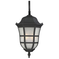 Ashburn 2 Light 26 inch Black Outdoor Wall Lantern