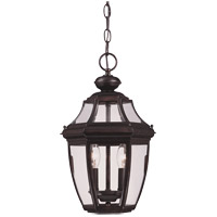 Endorado 2 Light 10 inch English Bronze Hanging Lantern Ceiling Light