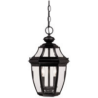 Endorado 2 Light 10 inch Black Outdoor Hanging Lantern