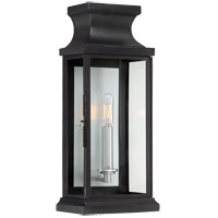 Brooke 1 Light 17 inch Black Outdoor Wall Lantern in Clear