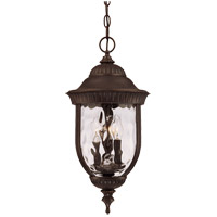 Savoy House 5-60328-40 Castlemain 3 Light 10 inch Walnut Patina Outdoor Hanging Lantern photo thumbnail