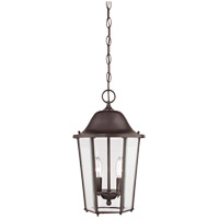 Truscott 2 Light 10 inch English Bronze Hanging Lantern Ceiling Light
