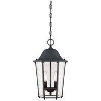 Savoy House Truscott 2 Light Outdoor Pendant in Black 5-6210-BK