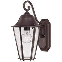 Savoy House 5-6211-13 Truscott 1 Light 14 inch English Bronze Outdoor Wall Lantern photo thumbnail