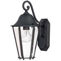 Savoy House Truscott 1 Light Outdoor Wall Lantern in Black 5-6211-BK