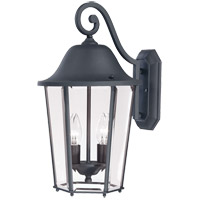 Truscott 2 Light 18 inch Black Outdoor Wall Lantern