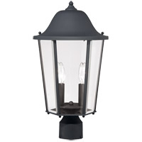 Truscott 2 Light 20 inch Black Post Lantern
