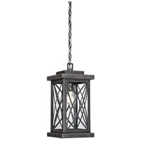 Norwalk 1 Light 8 inch Brushed Bronze Outdoor Hanging Lantern