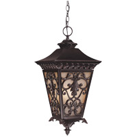 Savoy House Bientina 4 Light Outdoor Hanging Lantern in Slate 5-7134-25 photo thumbnail