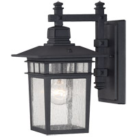 Linden 1 Light 13 inch Black Outdoor Wall Lantern in Textured Black