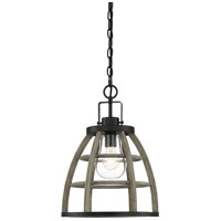 Luisa 1 Light 13 inch Weathered Birch Garden Chandelier