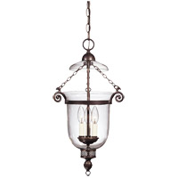 Crabapple 3 Light 13 inch Old Bronze Pendant Ceiling Light in Clear