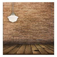 Savoy House 7-9346-1-69 Classic Schoolhouse Designs 1 Light 14 inch Pewter Pendant Ceiling Light in White Opal Etched alternative photo thumbnail