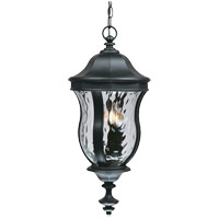 Monticello 3 Light 10 inch Black Outdoor Hanging Lantern