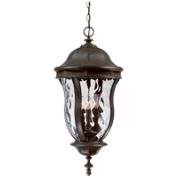 Monticello 4 Light 13 inch Walnut Patina Outdoor Hanging Lantern
