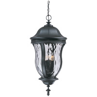 Monticello 4 Light 13 inch Black Outdoor Hanging Lantern