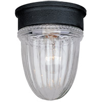 Exterior 1 Light 5 inch Textured Black Outdoor Flush Mount, Jelly Jar
