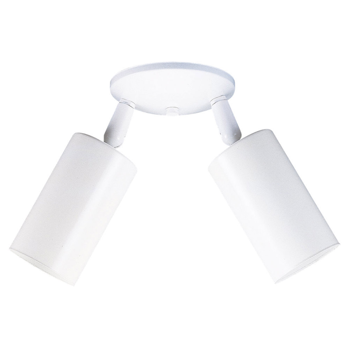 Sea Gull Lighting Bullets 2 Light Directional Ceiling Light in White 2013-15