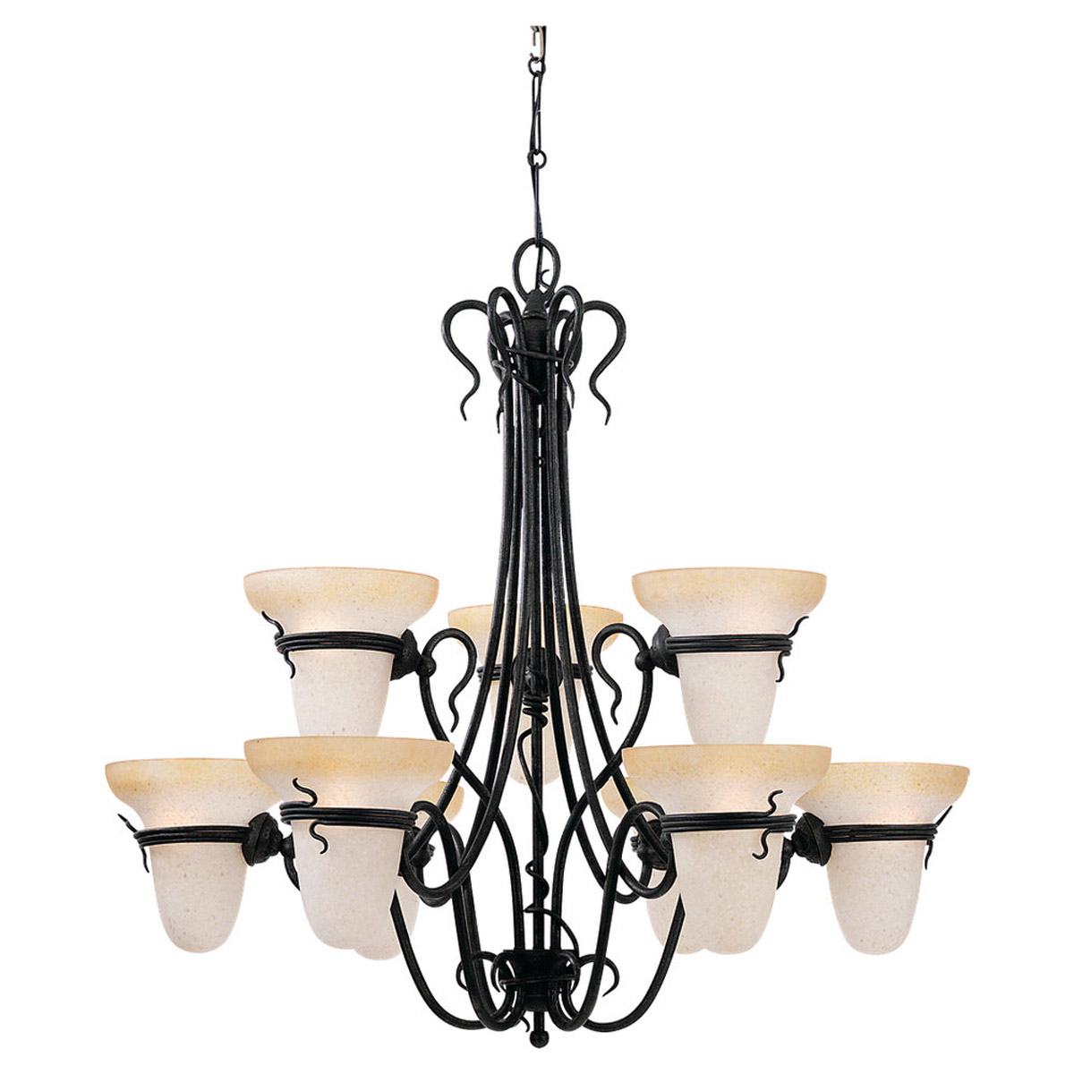 Sea Gull Lighting Saranac Lake 9 Light Chandelier in Forged Iron 3212-185 photo