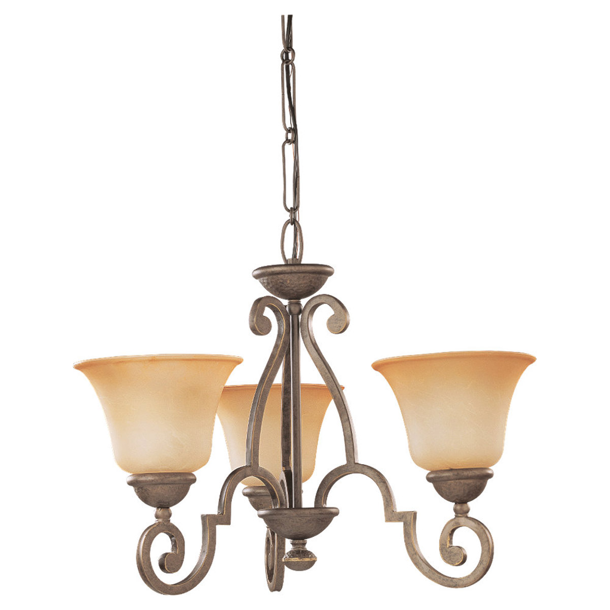 Sea Gull Lighting Brandywine 3 Light Chandelier in Antique Bronze 39031BLE-71 photo
