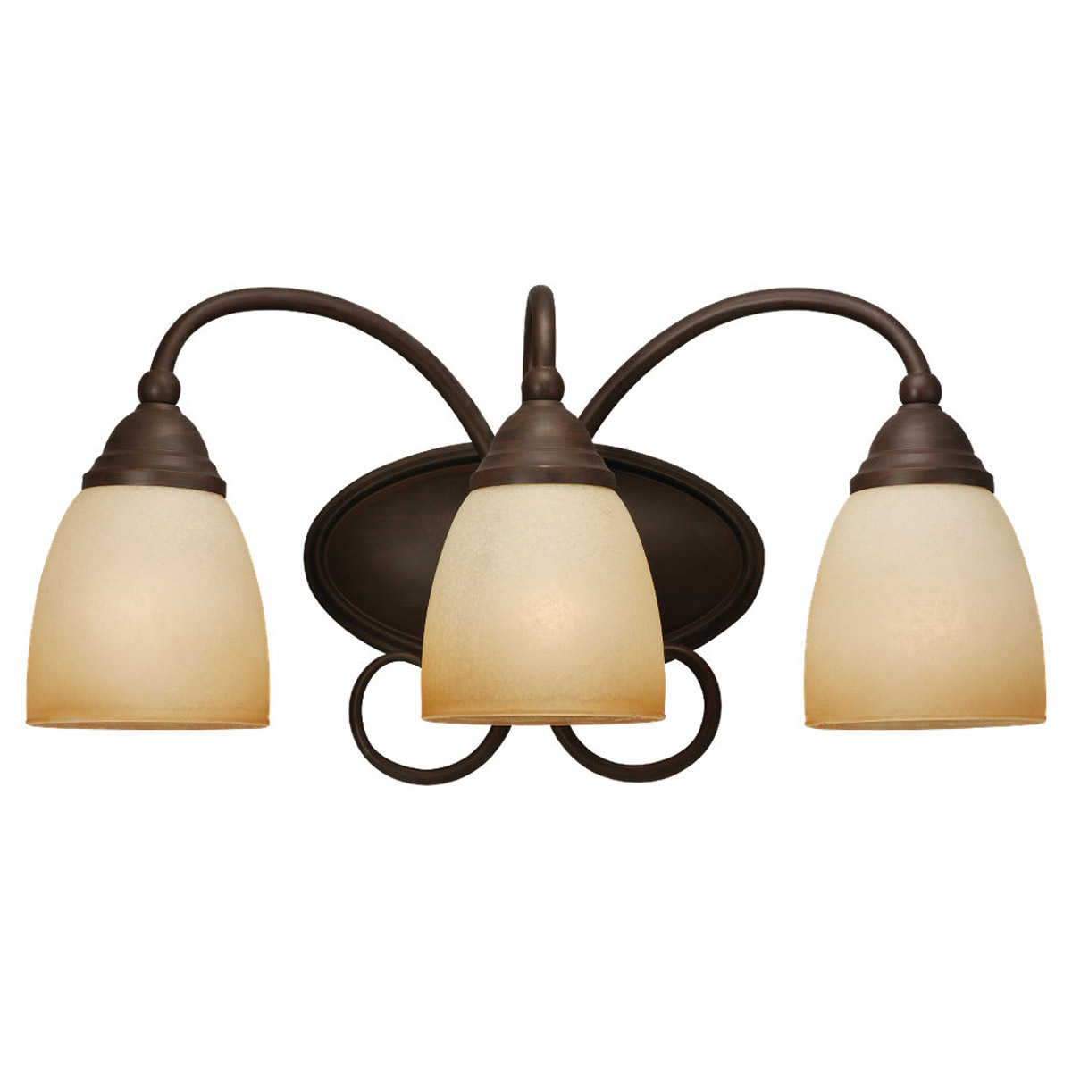 Sea Gull Lighting Montclaire 3 Light Bath Vanity in Olde Iron 44106-72