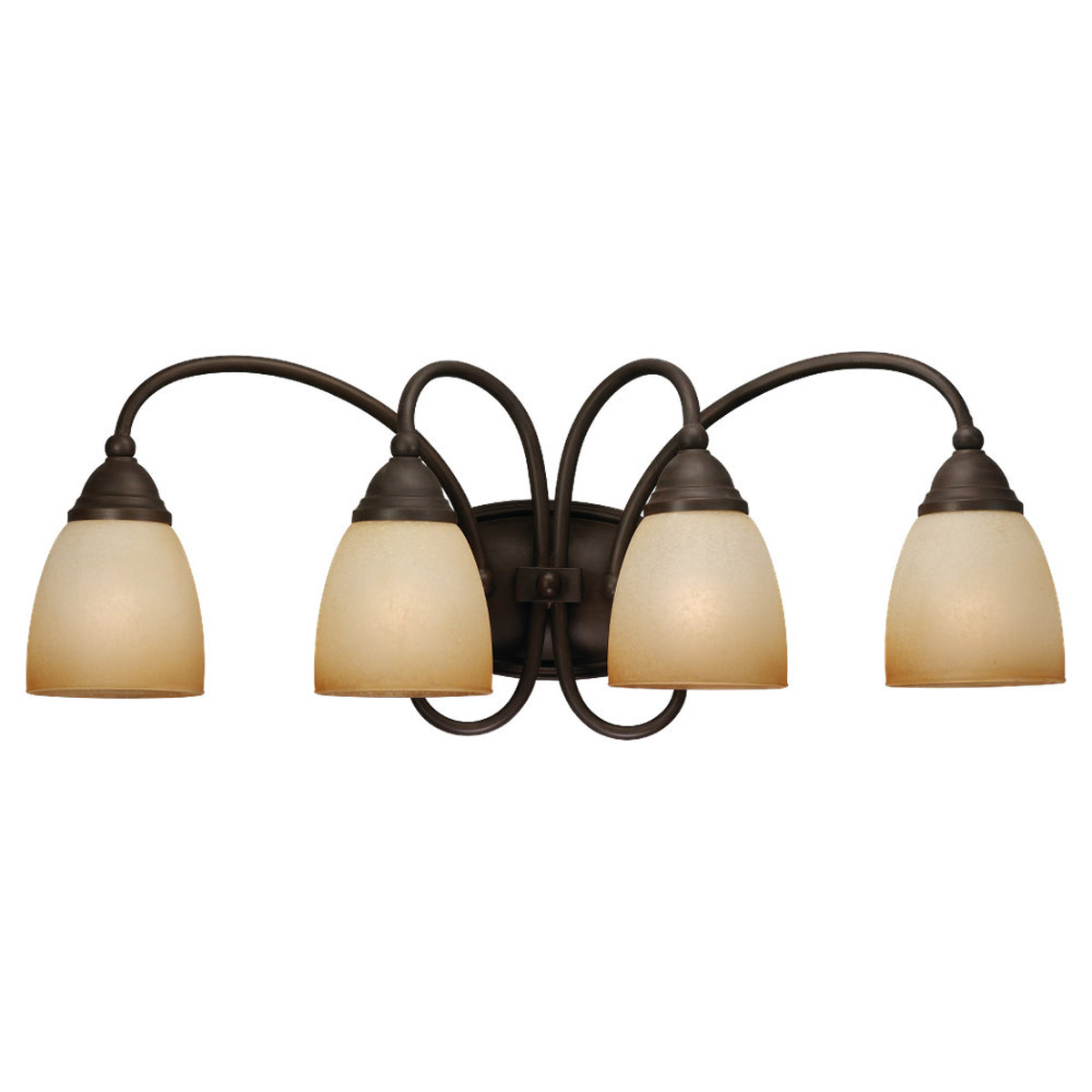Sea Gull Lighting Montclaire 4 Light Bath Vanity in Olde Iron 44107-72