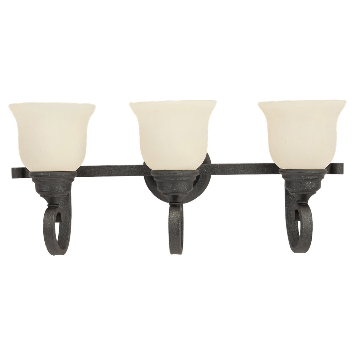 Sea Gull Lighting Serenity 3 Light Bath Vanity in Weathered Iron 44191-07