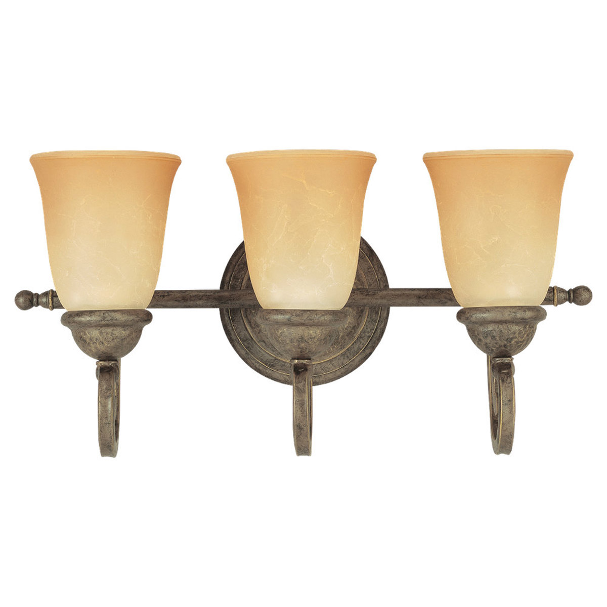 Sea Gull Lighting Brandywine 3 Light Bath Vanity in Antique Bronze 44431-71